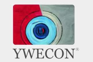 Logo YWECON